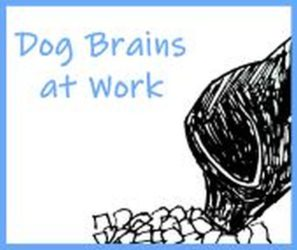 Dog Brains at Work